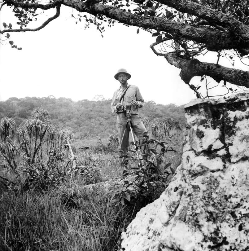 Une1-amazonia-santasombra